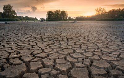 Az elsivatagosodás és az aszály