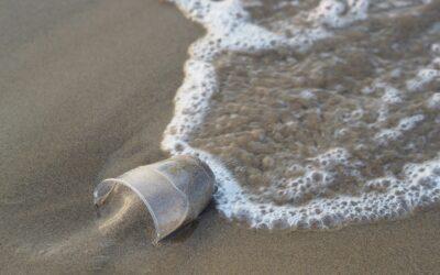 Baktériumokkal a műanyaghulladék ellen?
